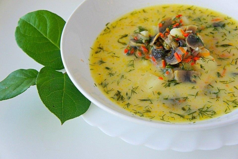 Сырный грибной суп