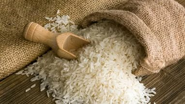 Рис полнит